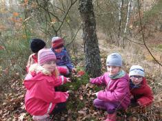 Podzimní tvoření ve školce i venku ...